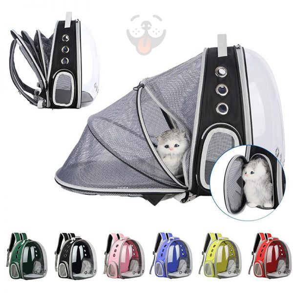 apollo dog backpack with tent tech